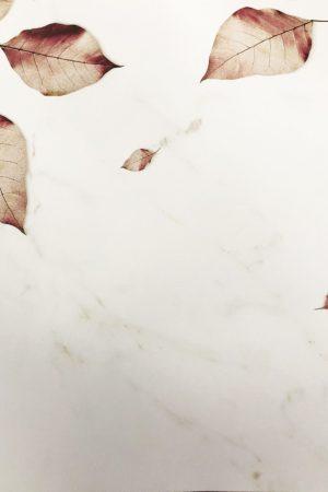 """רקע לצילום ציפורניים """"Autumn"""""""