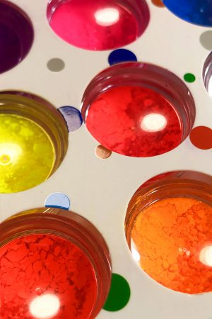 12 אבקות פיגמנט ניאון צבעוניות לקישוטי ציפורניים (איכותיות במיוחד) Proffessional Neon Nail Powders