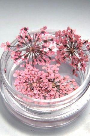 פרחים מיובשים לקישוט הציפורניים Dried Nail Flowers – גוון ורוד